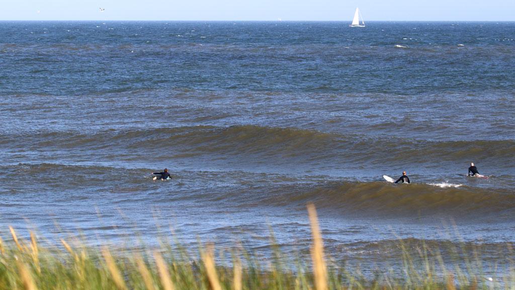 golfsurfen nederland